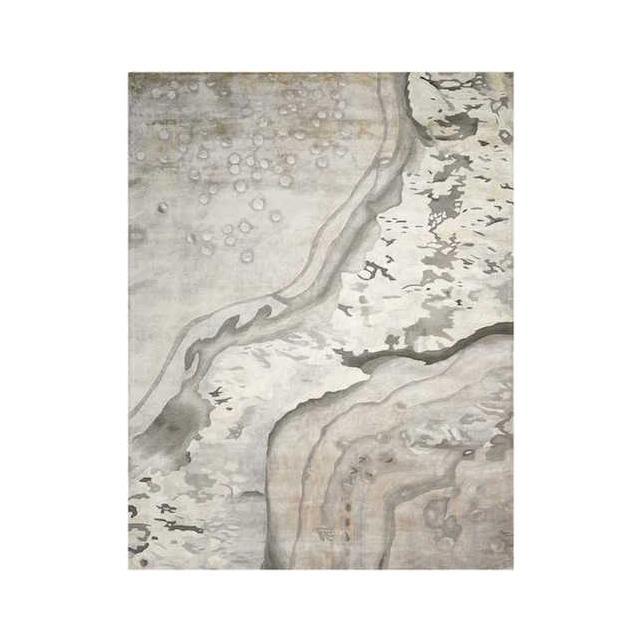 Nourison grey rug